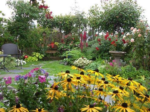 Spectacular flower garden with year round color